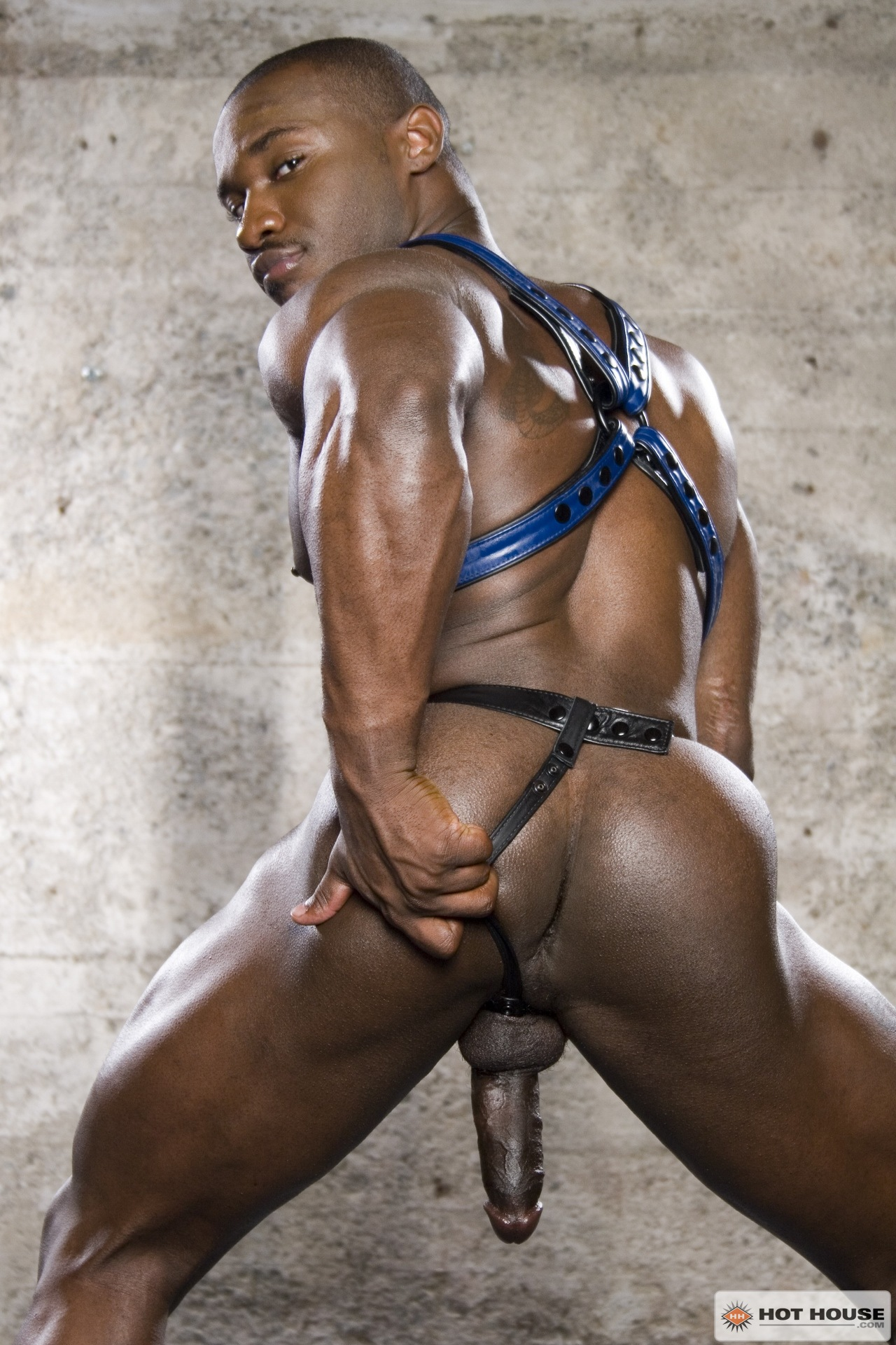gay black men porno