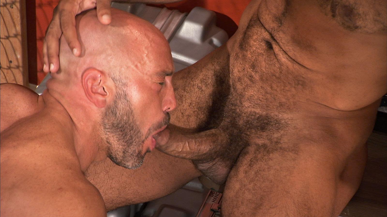 3 scene gay porn