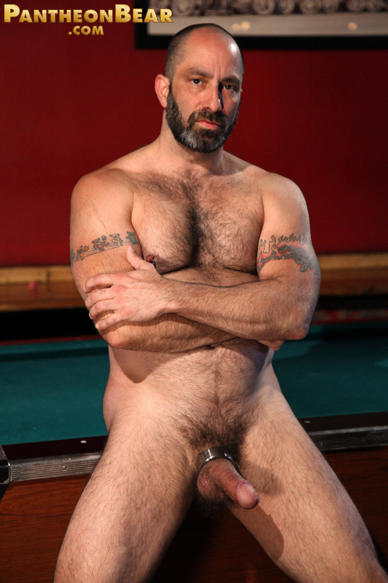 All Free Gay Bear photo and picture galleries