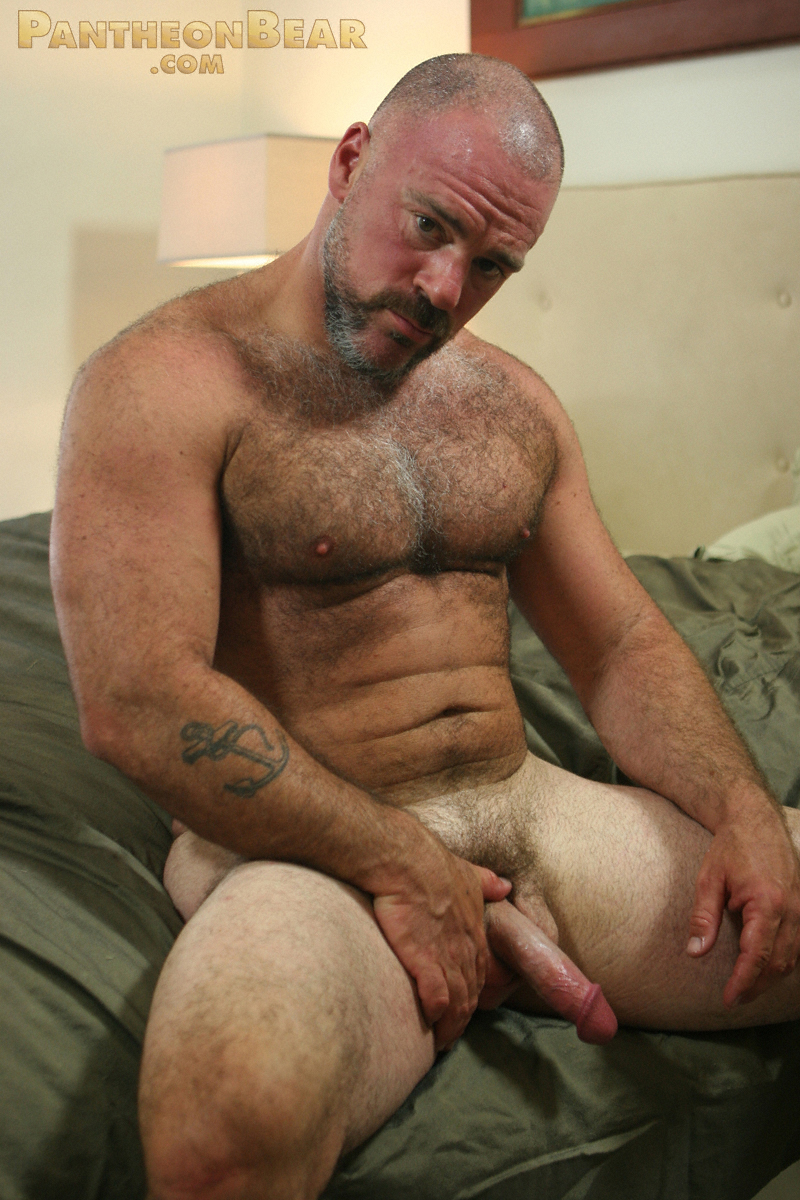 Bear free hairy man pic not