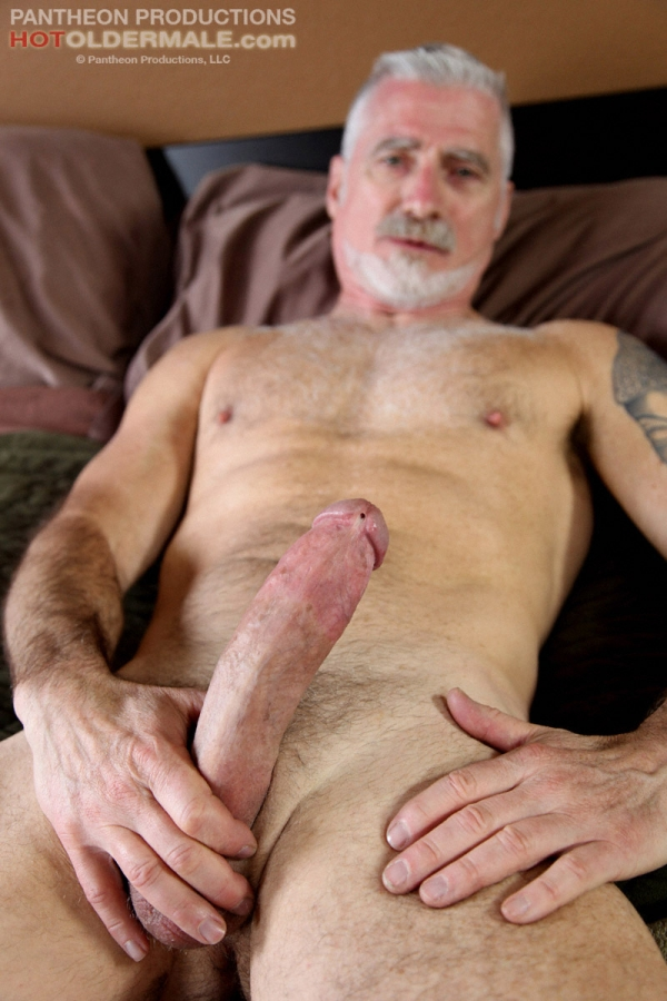 Silver daddy cock
