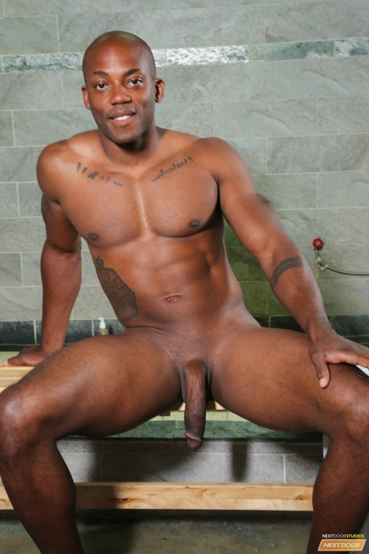 Gay Studs Big tempting Big dick black studs Store.