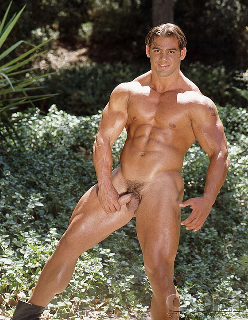 from Ari male muscle gay porn