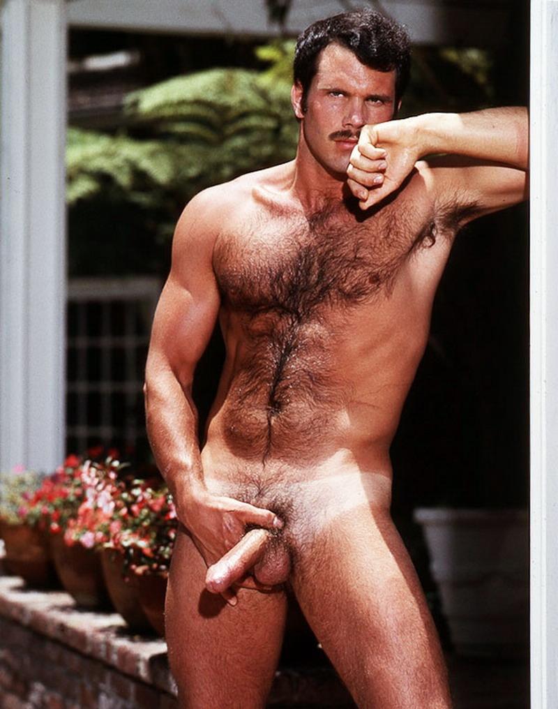 Vintage Hairy Gay