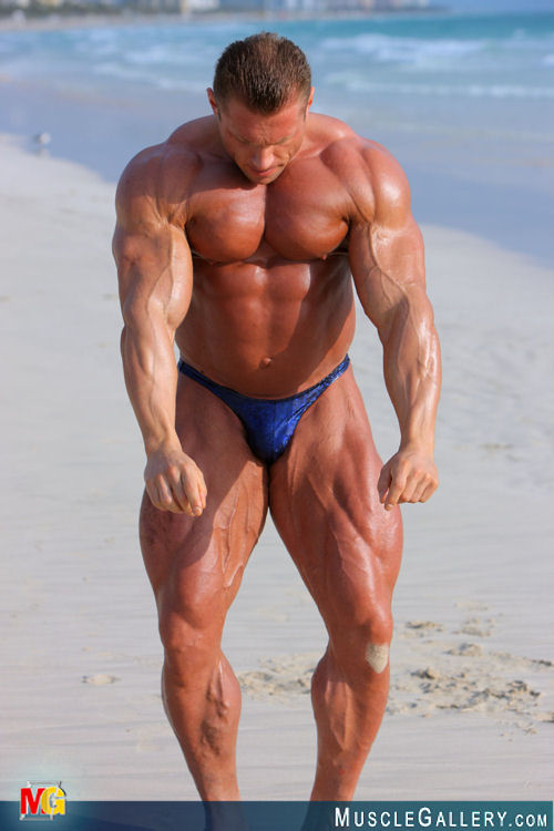 euro muscle solo